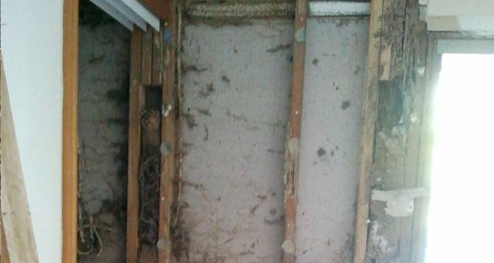 Termite damage to wall timbers